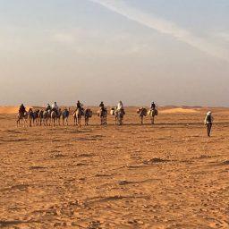 Sudan #2: A foot trek across the Bayuda desert